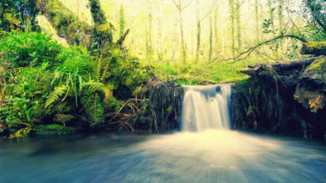 川に流れ込む上流からの滝